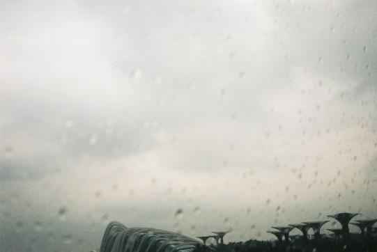 The day got wet