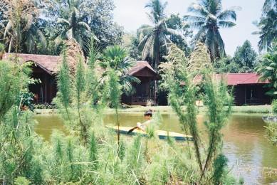 Kayaking in noon